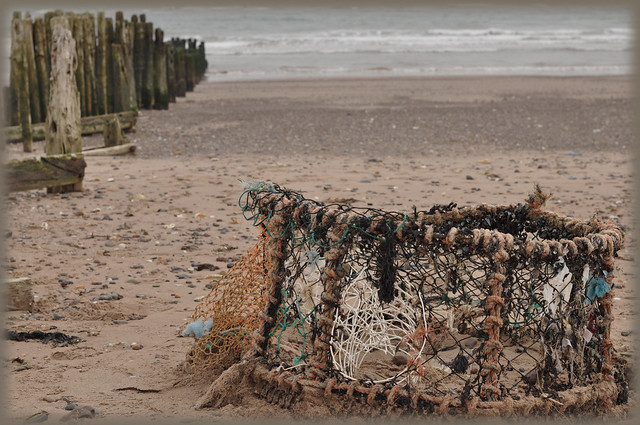 Dawlish Warren Lobster net