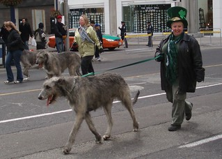 2006 St. Patrick's Day Parade | by Mike Boon