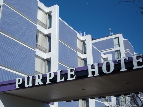 The Purple Hotel | by repowers