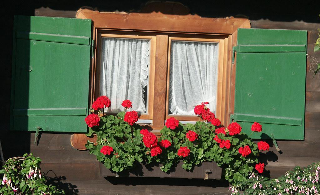 Fenster mit Fensterläden und Blumenkasten | Flickr - Photo ...