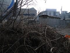Ist das Übergangslager hier? | by http://gitmo.tv