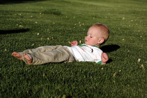 day 684: laying in the grass is fun, except when it touches your head, hands and toes. | by snowdeal