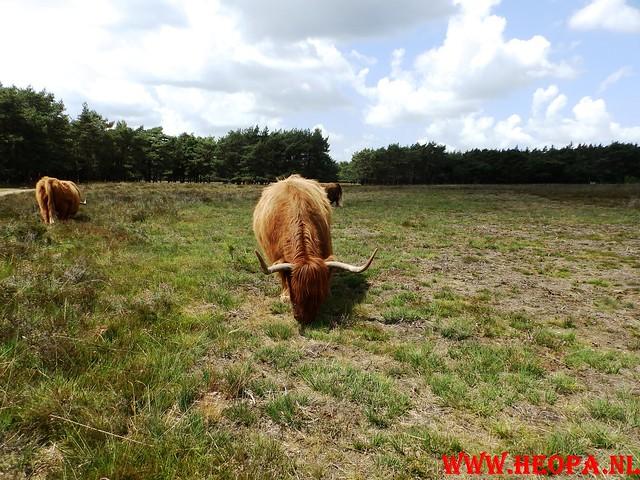 2015-06-27 F.K.C. 't Gooi Wandeltocht 36.4 km (66)