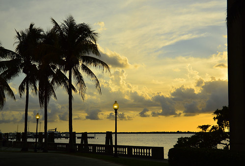 sunset sky clouds downtown florida palmtree fl fortmyers
