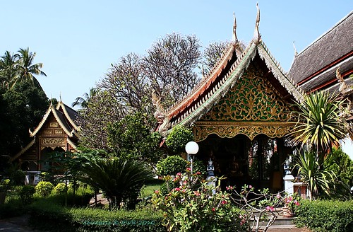 20101122_1961 Wat Chiang Man, วัดชียงมั่น   by ol'pete