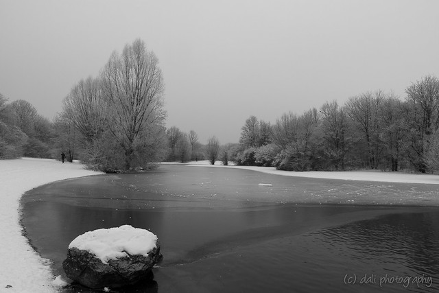 A snowy winter day without sunshine