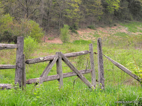 wood old abandoned field rural wooden woods gate pennsylvania country pa pasture forgotten lehighvalley countryroad dilapidated northamptoncounty slatebelt lowermtbetheltownship garrroad