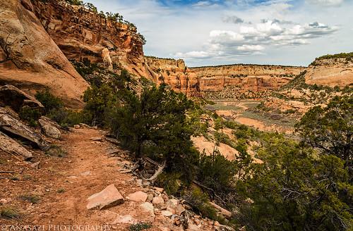 Upper No Thoroughfare Trail II | by IntrepidXJ