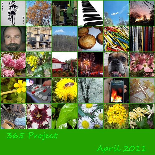mosaic april 356project 2011inphotos ayearjourney