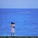 Dusk at a beach in Hualian, Taiwan. /   Canon AE-1 / 135mm f/2.8 / Velvia 50