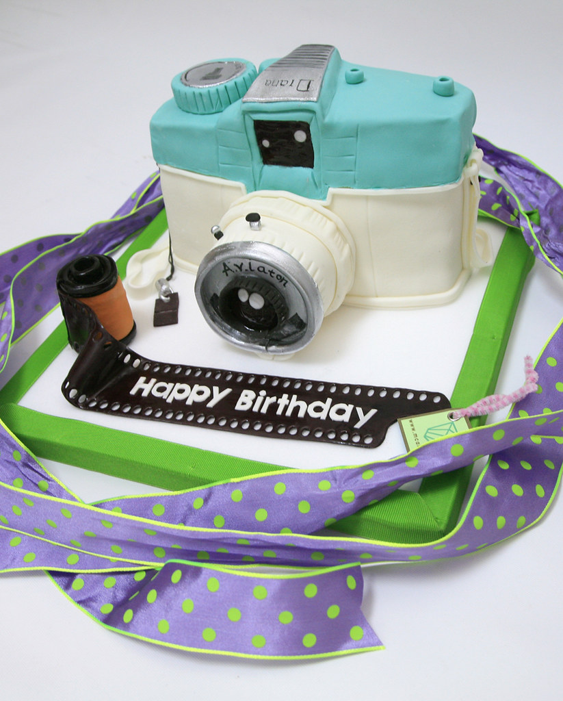 Remarkable Lomo Camera Birthday Cake M Cakes Mcake Co Mcak Flickr Funny Birthday Cards Online Barepcheapnameinfo