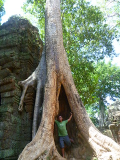 Seeing & climbing the temples of Angkor   by JMParrone