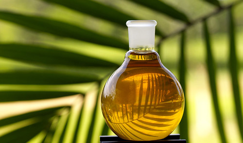 Palm Oil | by visionshare