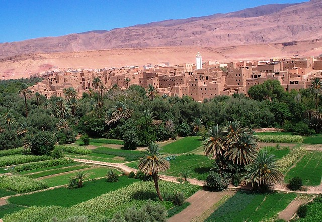 MOROCCO - Oases System in Atlas Mountains