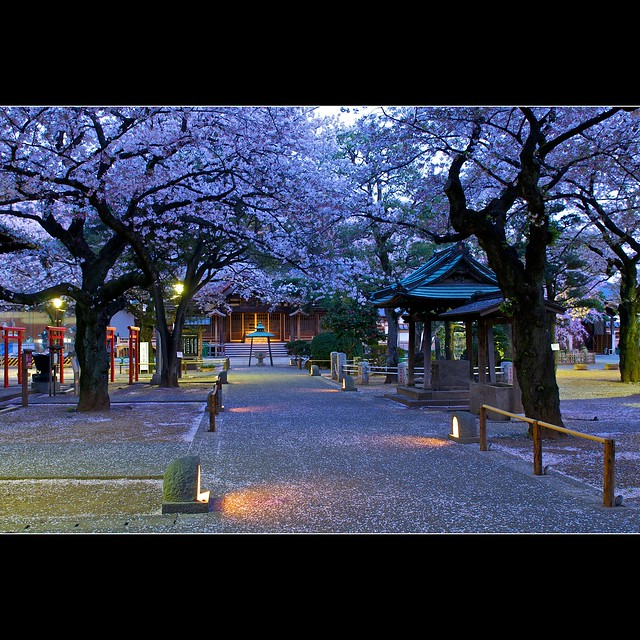 Tokyo temple - before the blue hour, is it the pink hour ?