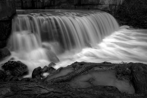 longexposure morning light tree water canal waterfall lock root timeelapsed maumeeohio miamierie