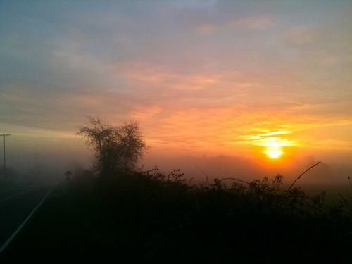 sunrise outdoors running