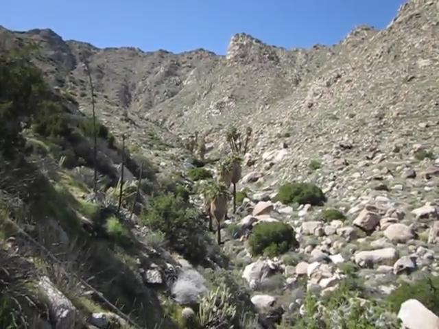 Indian-Canyon_223