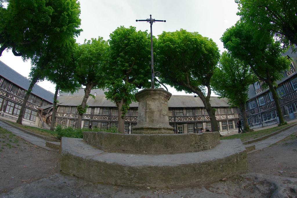 Cours d'équitation à Saint-Sulpice, équitation à Buzet-sur-Tarn