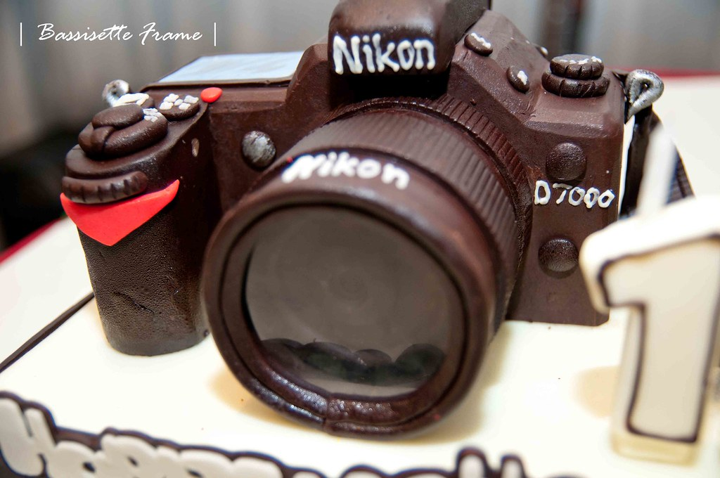 Outstanding Nikon D7000 Birthday Cake Gave This Cake To My Sister For Flickr Personalised Birthday Cards Sponlily Jamesorg