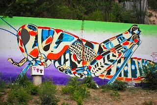 Grasshopper Graffiti