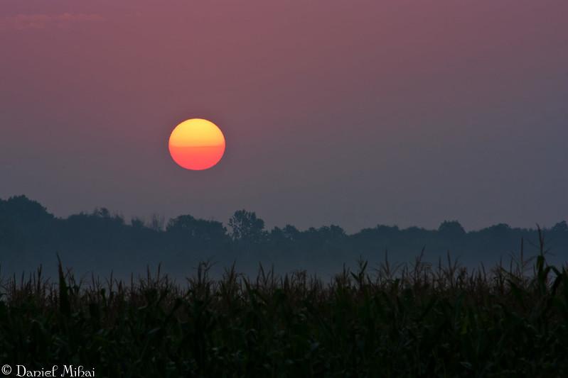 The perfect Sunrise by Daniel Mihai