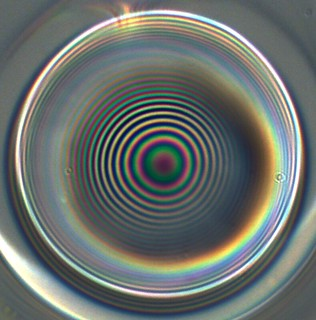 More white light interference on the end facet of an optical fibre | by Andrew Riley-Watson