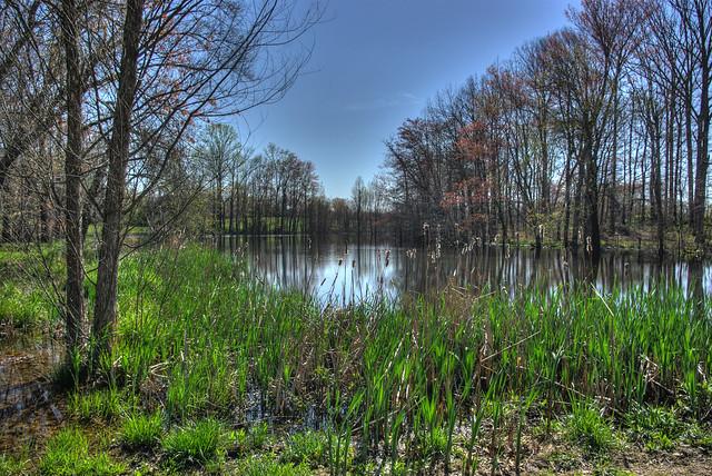 Small pond, Overton Co, TN