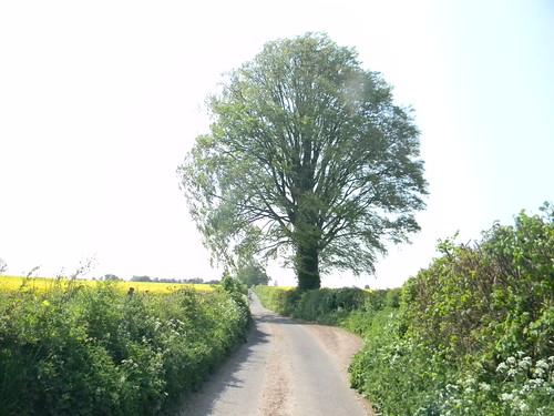 Country Road Overton Circular