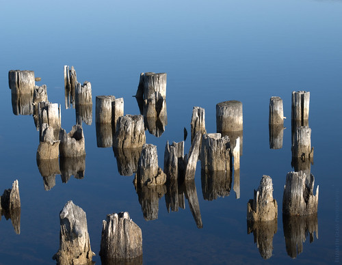 reflection water sunrise nikon decay pilings boynecity lakecharlevoix d60