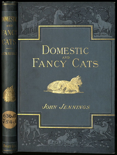 Domestic or Fancy Cats: A Practical Treatise on Their Antiquity, Domestication, Varieties, Breeding, Management ... | by State Library of Massachusetts