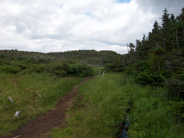 5:05:40 (85%): hiking newhampshire whitemountains franconianotch mtlafayette mtlincoln greenleaftrail franconiarange