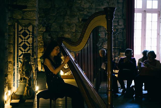 8545 ~ Harp Recital (Explore, May 30, 2014 #28 )