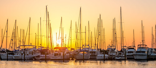 marina sunrise stpetersburg boats florida sailboats stpetersburgyachtclub lovefl