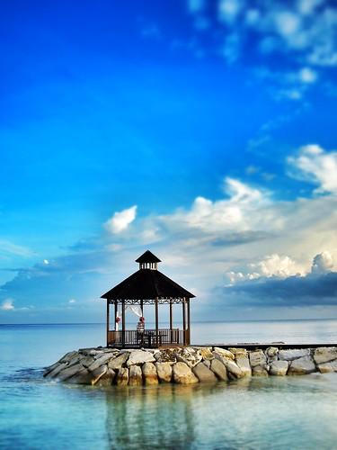 ocean nature jamaica