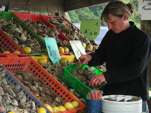 Bretaň: pobřeží v Cancale pro ústřice zrozené