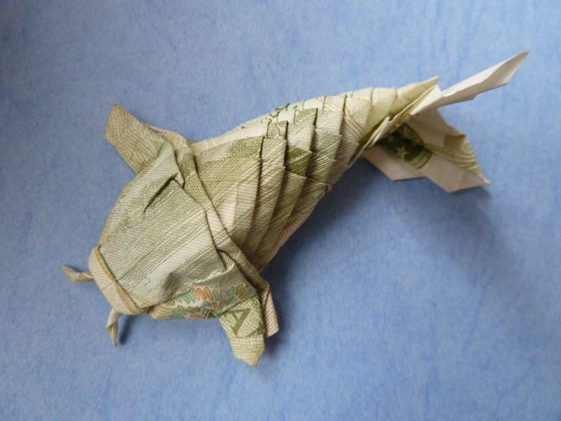 Coldrain Koi Fish Money Origami by desdainart on DeviantArt | 600x800