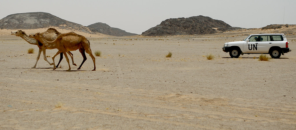 Resultado de imagen de minurso sahara