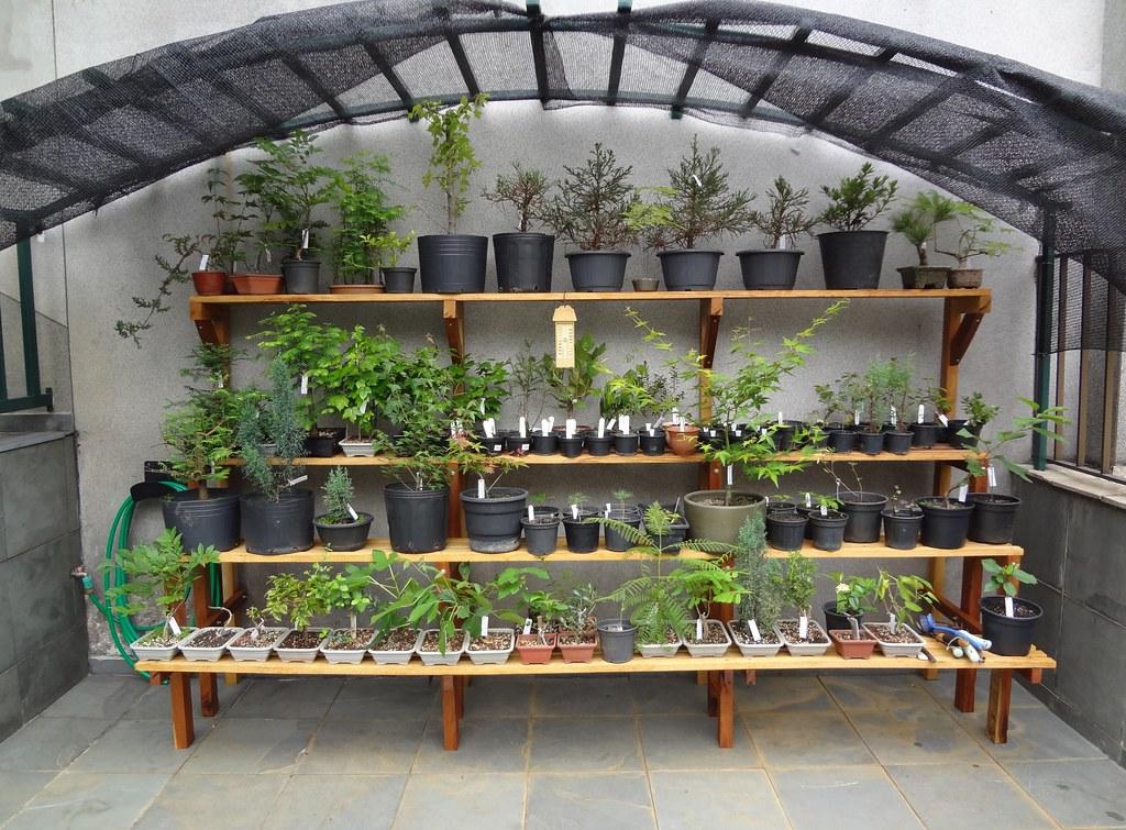 Ze Moa bonsai bench based on my plans | Bench by Ze Moa base ... Ze Houseplant on