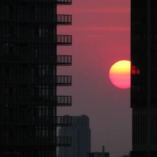 Sun Apple. Downtown Framed