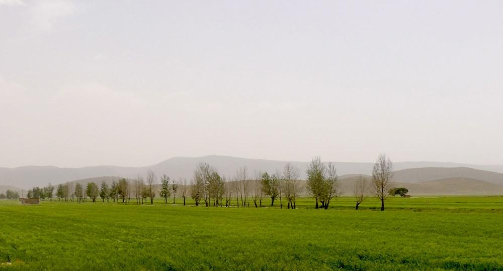 yazd-shiraz-L1030099