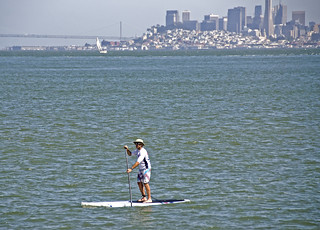 Paddle Boarding | by Susan Sharpless Smith