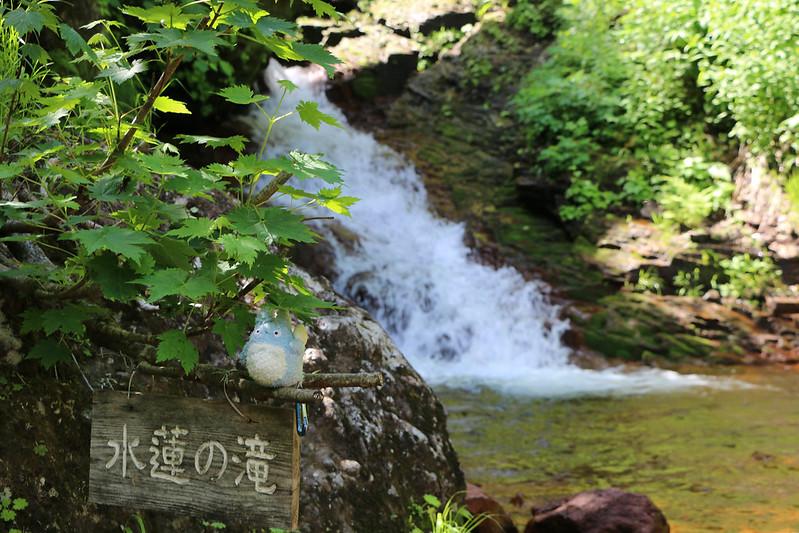 斜里岳 水連の滝