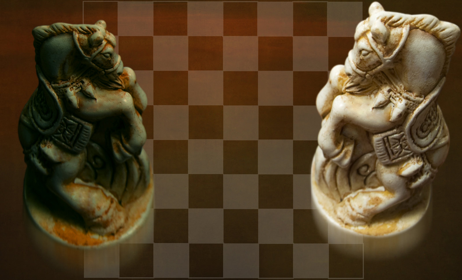 Caballos / Corceles de combate