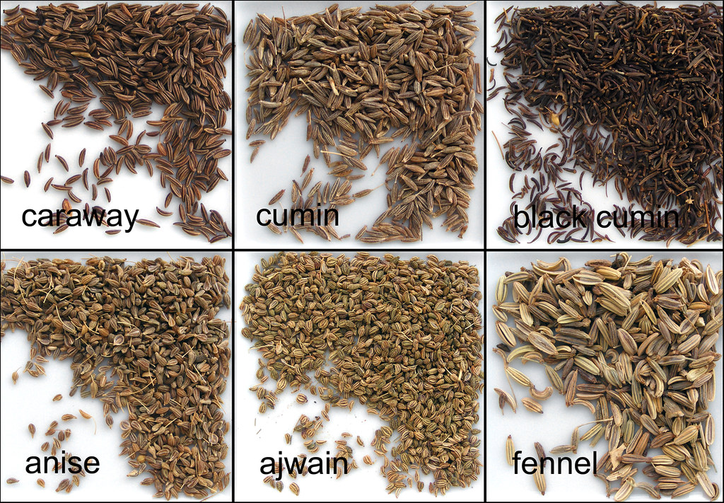 Caraway, cumin, aniseed, ajwain and fennel | Thought it woul