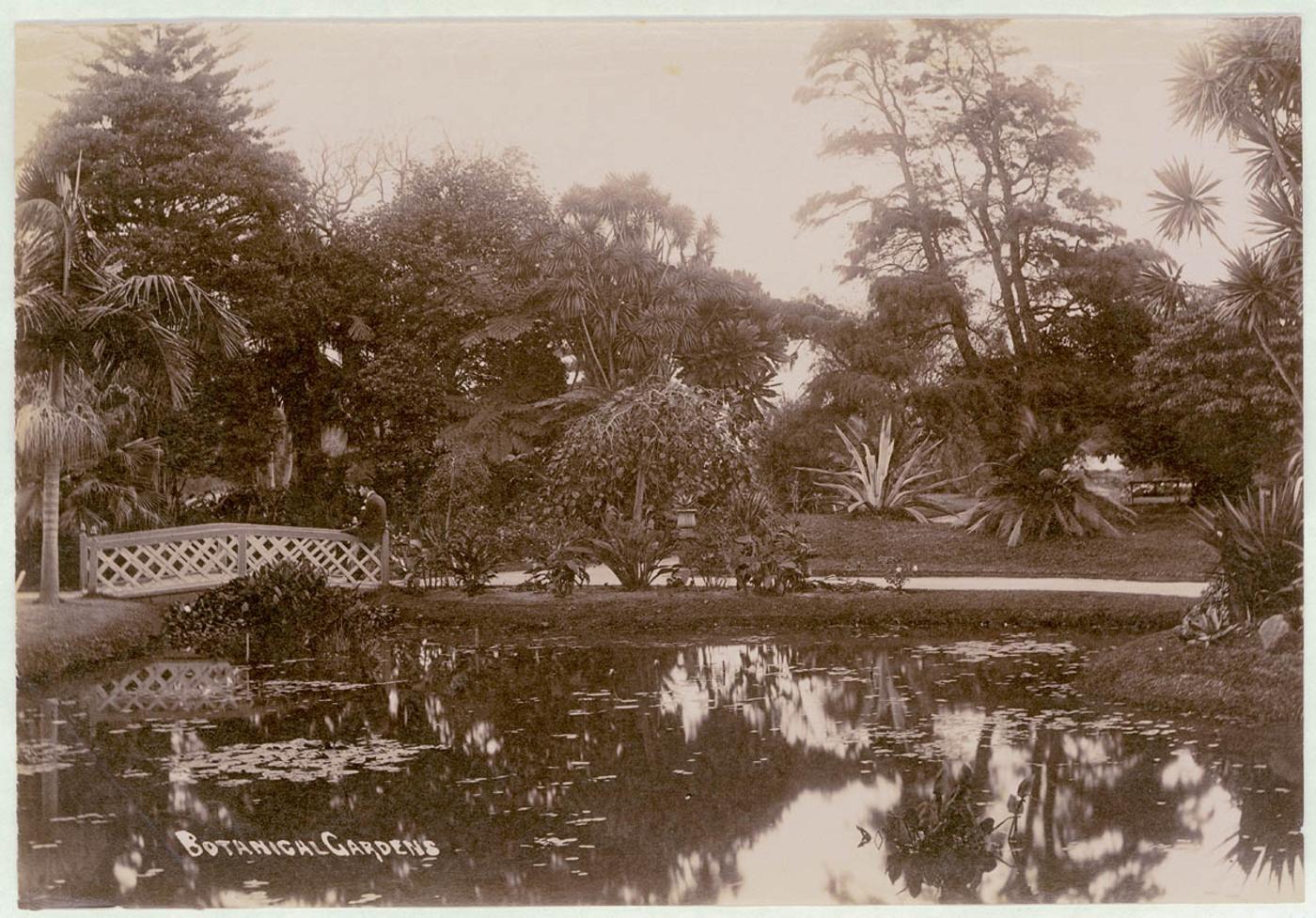 Botanical Gardens, Sydney, c. 1900-1910