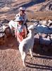 Potomci Inků, foto: Mirka Baštová