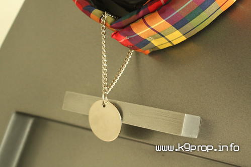 K9 Tartan Collar and Dog Tag | by williamselling