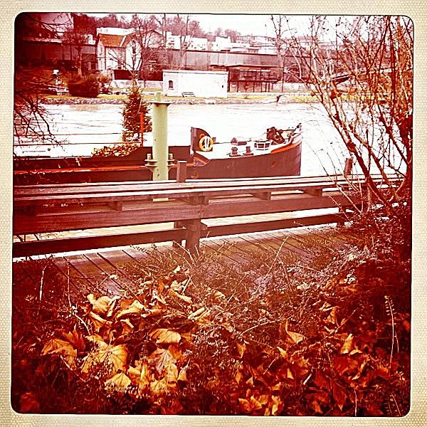 11 - 30 décembre 2010 Maisons-Alfort Bords de Marne