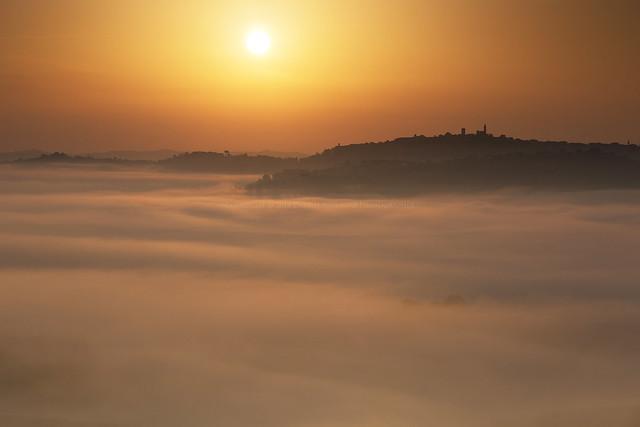 Morning fogs (04424)